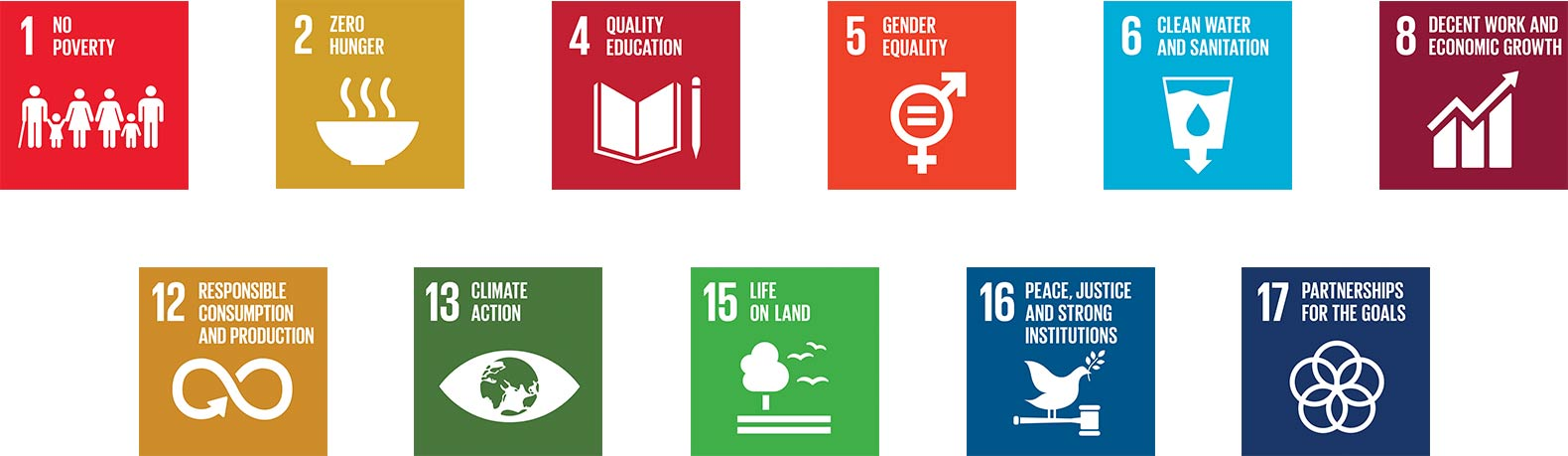 Icons depicting Nespresso's involvement in the UN Sustainable Development Goals